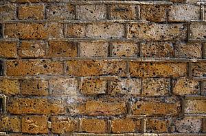 Omfugning af mur